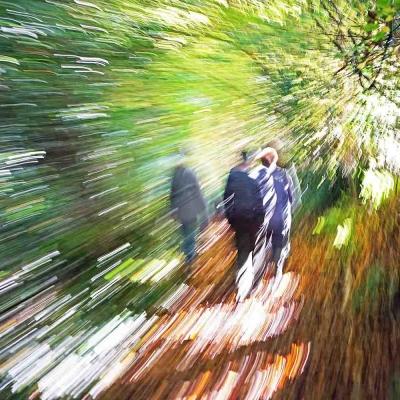 1-Promenade dans les chemins de Montviette. EPUISE