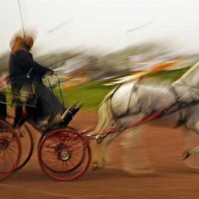 Attelage Lisieux 5 . Photographie disponible